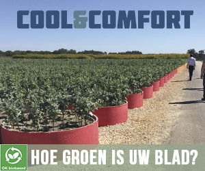 Hoe groen is ons blad